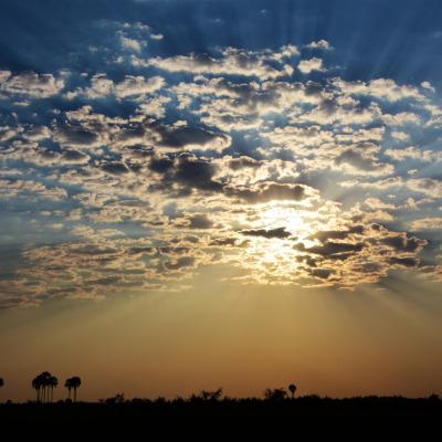Botswana Starter DSC_5950